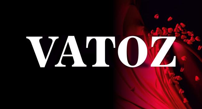 VATOZ Logo